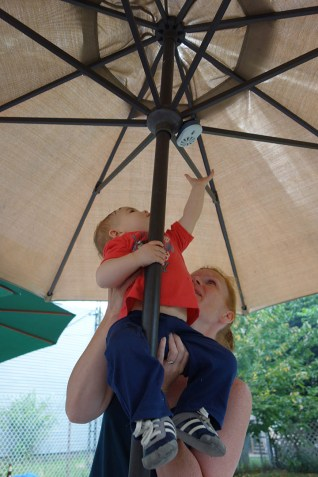 Climbing an umbrella and reaching for insecticide.
