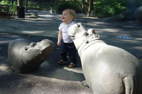 baby_hippos_09.28.13