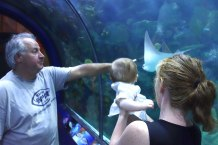 Uncle Chris points out a stingray to Henry.