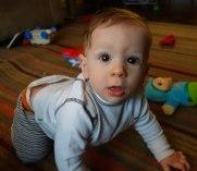 Hudson crawling.