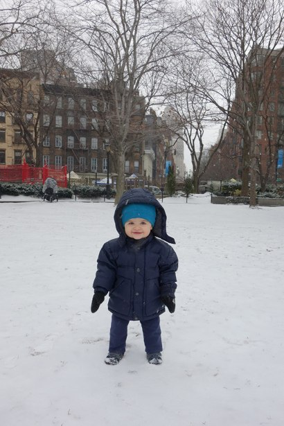 Henry stands still in the snow at Washington Market Park.
