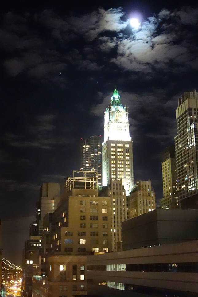 rooftop_moonlight_03.17.14