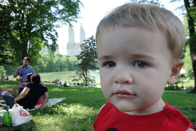 Snot nose in foreground; Central Park's Lake and The San Remo towers in background.