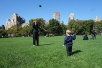 Catching in the Sheep Meadow.