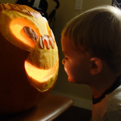 Face to face with a monkey pumpkin.