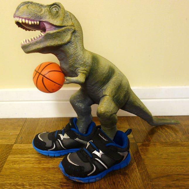 trex_basketball
