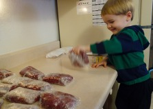 Helping to wrap elk meat