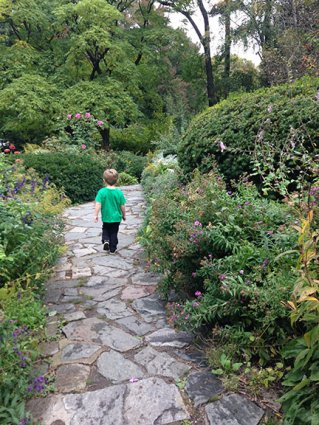 Exploring the Shakespeare Garden.