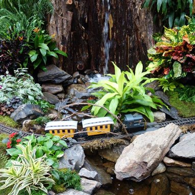 Botanical Garden Holiday Train Show \'15 | Henry Cousin